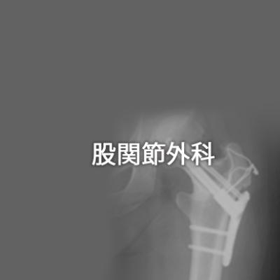 股関節外科